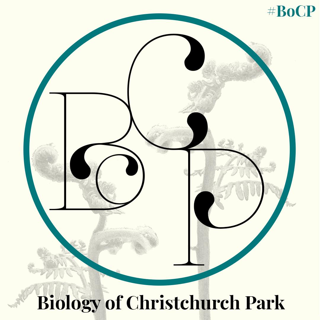 BoCP thumbnail Biology of Christchurch Park logo